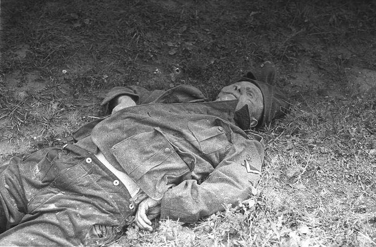 German KIA Soldier, Kursk in July 1943.