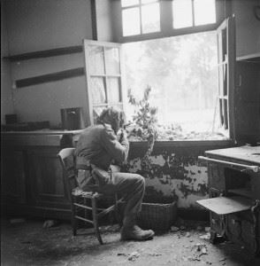 A British sniper, Private Sutcliffe, seated at a window of a house in Caen watching for enemy snipers through telescopic sights.