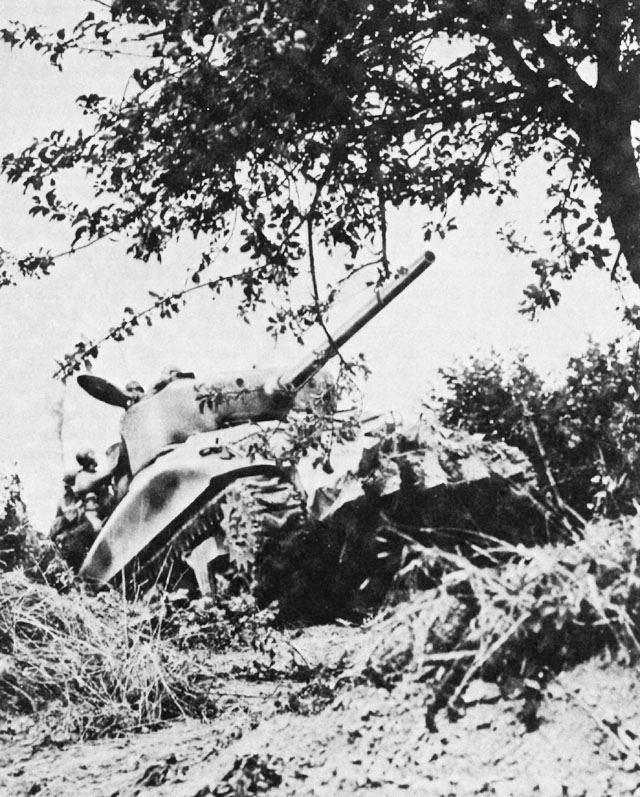 A Sherman 'Rhino' variant, modified to cut through the hedgerows of the bocage countryside, Normandy 1944