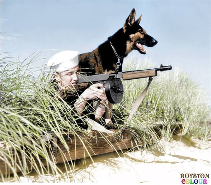 'Dog Beach Patrol', (possibly on Parramore Beach, Virginia, US October 1943) A Coast Guard and his Alsatian dog poses with a M1928A1 Thompson SMG with 50-round drum magazine - .45 ACP
