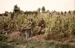 A Vickers machine gun team of 7th Battalion Royal Northumberland Fusiliers, 59th (Staffordshire) Division in position in a field of corn at Someren in Holland, 21 September 1944.