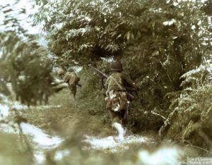 Three US infantrymen advance at a crouching run using a Bocage hedgerow and embankment as cover. This picture shows to advantage the close nature of fighting in Normandy bocage country where the Germans became adept at digging into these hedgerows turning each field into a potential ambush. June/July 1944.