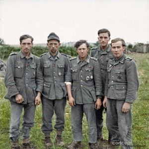 A group of veteran German prisoners captured at Maltot, south west of Caen, Normandy. 23rd of July 1944. We think that some or all of these 'Veterans' could be from the Grenadier Regiment 980 (formerly 348), 272nd Infantry Division (formerly the 216th), which had been decimated on the Eastern Front in July 1943. They all are showing the The Iron Cross 2nd Class medal ribbon. Three are wearing the Eastfront medal ribbon, three have the Wound Medal in Silver (2nd class) for being wounded three or four times). One has the Wound Medal in Black (3rd class, representing Iron) for those wounded once or twice by hostile action). The Grenadier in the centre also wears the Iron Cross 1st Class and a Silver Assault Badge. (Source - © IWM B 7928 - Sgt. J Mapham J - No 5 Army Film & Photographic Unit)