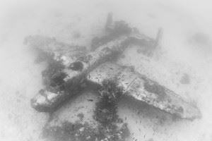 WWII Airplane Graveyard - B-25 Mitchell (Credits: Brandi Mueller for Argunners)