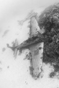 Douglas SBD Dauntless Wreck at Airplane Graveyard Kwajalein (Credits: Brandi Mueller for Argunners)