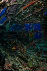 Inside the Curtiss C46 Commando - WWII Airplane Graveyard (Credits: Brandi Mueller for Argunners)