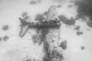SBD Dauntless Wreck at Airplane Graveyard Kwajalein (Credits: Brandi Mueller for Argunners)