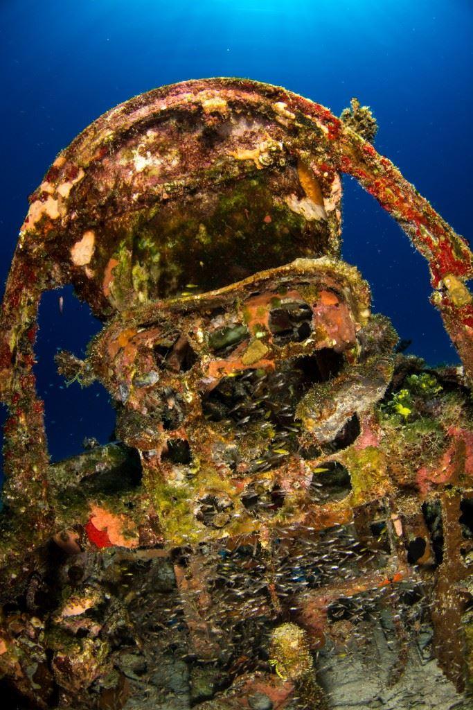 Plane Graveyard of Kwajalein Atoll (Credits: Brandi Mueller for Argunners)