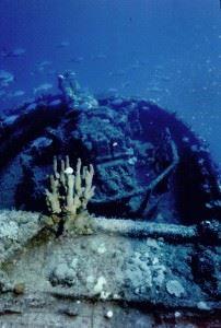 Wreck of the USS Saratoga - Twin Guns