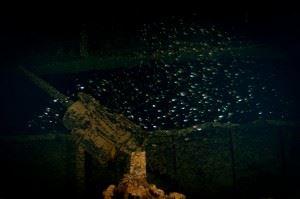 Shipwreck of the Heian Maru. (Credits: Brandi Mueller)