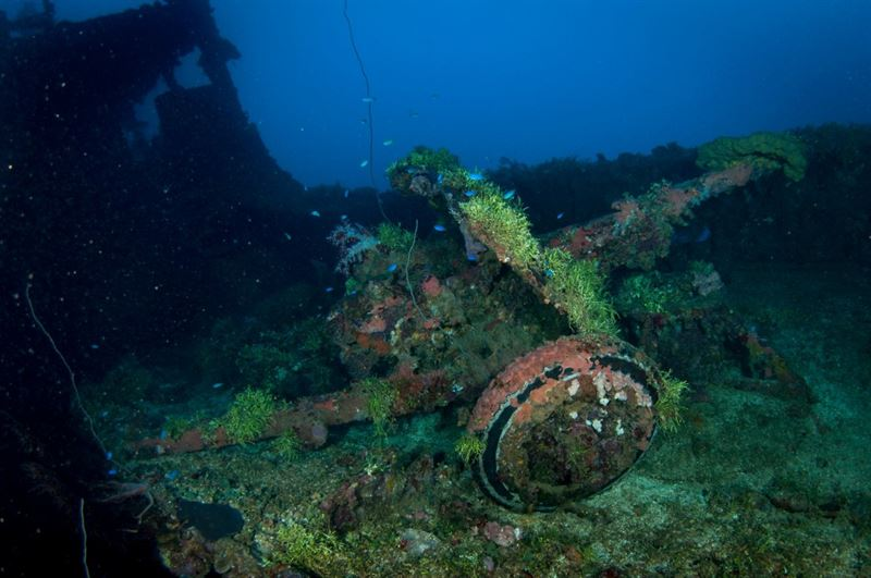 Artillery piece on the deck of Nippo Maru, Truk Lagoon. (Credits: Brandi Mueller)
