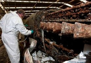 Conserver Gary Walsh working on the fuselage remains. (Credits: Commonwealth of Australia)