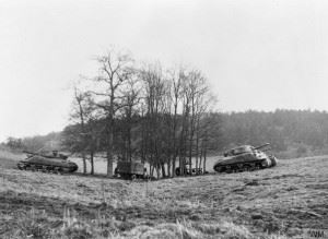 Inflatable Sherman tanks and 3-ton lorry in a copse. (Credits: © IWM (H 42532))
