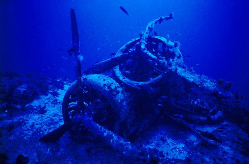 Wreck SM79 3