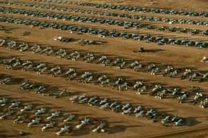 """Rows of fighter aircraft preserved inside the 309th Aerospace Maintenance and Regenerations Group's """"Boneyard"""" at Davis-Monthan Air Force Base, Ariz. The Arizona desert is a natural selection to house for the Air Force's only aircraft """"boneyard"""" due to the lack of rust and metal deterioration with the lack of humidity in the desert. (Credits: U.S. Air Force photo/Tech. Sgt. Bennie J. Davis III)"""