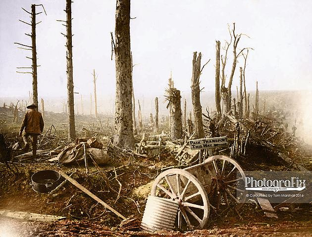 Artillery stripped trees and a signboard pointing the way for pack transport'