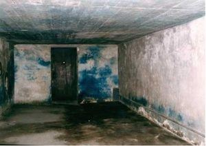 Prussian Blue Staining on Walls of Typical Delousing Chamber