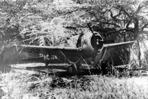 Brewster Buffalo F2A-3 in revetment at MCAS Ewa circa 1942. Note the number 12 on the leading edge of the wing. Number 12 would correspond to Marine Fighting Squadron 221 (VMF-221), aircraft number MF-12, BuNo 01542.