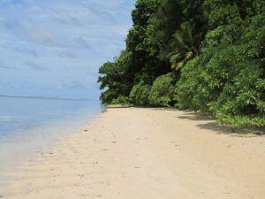 Invasion Beach Peleliu